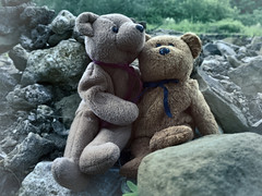 Friendship (Mulewings~) Tags: friends teddybears toys stilllife justbe life