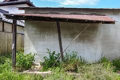 犬の糞の後始末お願いします (m-louis) Tags: 6713mm j5 nikon1 japan kaizuka osaka plant rust shed tinyhouse tutanaga weed トタン 大阪 小屋 庇 日本 草 貝塚 錆