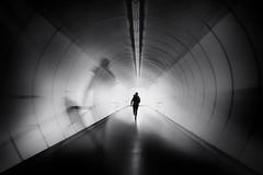 ...viennaunderground... (*ines_maria) Tags: underground ubahn vienna wien human geometry candid woman running city urban bw white subway symmetry austria panasonic arcitecture u1