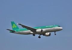 Aer Lingus EI-DEP (Northern Transport Photos) Tags: aerlingus airbus heathrowairport heathrow londonheathrow