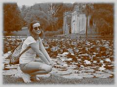 6068 - Waterlilies (Diego Rosato) Tags: water lily ninfea arianna stagno pond rovina ruin parco park giardino garden palazzo reale reggia realm royal palace caserta fuji x30 rawtherapee gimp