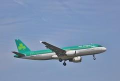 Aer Lingus AI-DVG (Northern Transport Photos) Tags: aerlingus airbus heathrowairport heathrow londonheathrow