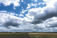 (CarolienCadoni..) Tags: sony ilca99m2 sonyilcaa99m2 sal2470z 2470mmf28zassm clouds field farm light cloudy