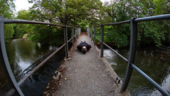 FDT #152 47-3 (EOS.5Dan) Tags: facedown tuesday fdt 2019 pont bridge suisse switzerland schweiz vaud vd barrière 5dmarkii canon 15mm fisheye
