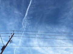 179/365 (moke076) Tags: sky birds electric clouds wire telephone pole oneaday mobile project cellphone cell photoaday 365 iphone 2019 project365 365project