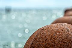 standing strong (Aline van Weert) Tags: 201906 alinevanweert lop zeeland sea zee westkapelle netherlands nederland holland beach strand