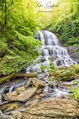 PeasronsFallsfull.FB (szafrakl) Tags: karenpics photographer photography landscape waterfalls nc northcarolina mountains blueridgeparkway rhodadendrons craggy garden pinnacle pearson fall falls