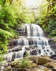 PearsonFallsFB (szafrakl) Tags: karenpics photographer photography landscape waterfalls nc northcarolina mountains blueridgeparkway rhodadendrons craggy garden pinnacle pearson falls