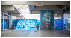 The blue end of the tunnel (leo.roos) Tags: straatkunst streetart muurschildering wallart muralism kijkduin winkelcentrum shoppingmall shoppingcentre sloop demolition graffiti thsa thehaguestreetart blue wijd meye blau graff graffi mural kunst fixedlens refitfordigital vastelens adaptedtoemount meyertrioplan2535 meyertrioplan135f25cm 1933 minifex darosa leoroos graphitti grafitti graphiti jillmartens shake airbrushart4u streetartcity winkelpromenadekijkduin