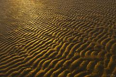 Oesterdam (Omroep Zeeland) Tags: oesterdam zonsondergang oosterschelde slik gloed