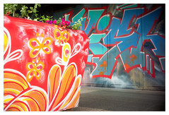 Flower power (leo.roos) Tags: bloembak planter container plantenbak straatkunst streetart muurschildering wallart muralism kijkduin winkelcentrum shoppingmall shoppingcentre sloop demolition graffiti thsa thehaguestreetart red orange colo lens nex nex6 rood fixedlens refitfordigital vastelens adaptedtoemount meyertrioplan2535 meyertrioplan135f25cm 1933 minifex darosa leoroos mural
