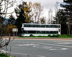 A BCTransit Dennis Trident Rounding A Sidney, BC Roundabout (AvgeekJoe) Tags: adlenviro500 alexanderdennisenvirobuses alexanderdennisenviro500 bctransit communitytransit d5300 dm5000 dslr dennistrident doubledeckerbus enviro500 nikon nikond5300 tamron18400mm tamron18400mmf3563diiivchld transbusdm5000 transbusinternationaltrident3 vehicle autumn bus fall masstransit masstransportation publictransit publictransportation transit