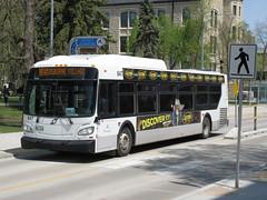 Winnipeg Transit 847 (TheTransitCamera) Tags: wt847 winnipegtransit transit transportation transport travel citybus bus fixedroute publictransit publictransport nfi newflyerindustries xcelsior xd40 winnipeg manitoba canada city urban route185