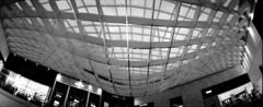 Scan-31 (rrrisotto) Tags: horizonperfekt panoramic 35mm horizon202 blackandwhite rollei200 saopaulo brazil swinglens iguatemi