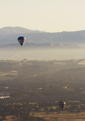 High and Low (elektron9) Tags: california ca cali usa us unitedstatesofamerica westcoast sonomavalley windsorca open heights birdseyeview view amazing beautiful morning soaring valley green lush balloon hotairballoon fog buildings