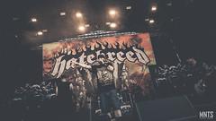 2019-06-26 Mystic Fest 2019 - Hatebreed - fot. Łukasz MNTS Miętka-10