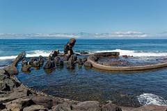 Costa Adeje, Santa Cruz de Tenerife, Canary Islands, Spain (wildhareuk) Tags: canaryislands canon canoneos500d concrete pool sea seascape spain tamron18270mm tenerife tenerife2019 water rock tamron img9488dxo