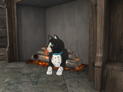 Cats and fires (Geni Piek) Tags: firestorm secondlife sl16bd kitties secondlife:region=phantasm secondlife:parcel=sunsethome secondlife:x=137 secondlife:y=218 secondlife:z=65