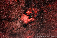 NGC 7000 (Tomm Lupus) Tags: astrophotography deepsky ngc7000