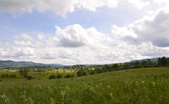 Canaan Valley NWR | 2019.06.25 | DSC_0097 (Kaemattson) Tags: westvirginia appalachianmountain canaanvalleynwr canaanvalleynationalwildliferefuge nationalwildliferefuge hiking trail outdoors landscape mountains lanscape panorama