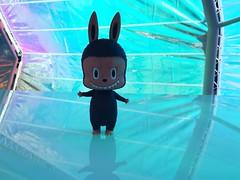 LaBubu at Second Home Serpentine Pavilion (TuSabesBlythe) Tags: labubu lungkasing toy plasticarttoy arttoy art losangeles serpentinepavilion kasinglung