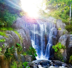 Waterfall at Sunset (Photo Peasant) Tags: waterfall water park garden pond sun sky green forest nature san francisco california bright