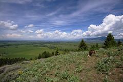 Bozeman (silver_ring) Tags: landscape montana 17mm hiking mountain clouds cloudscape sky blue