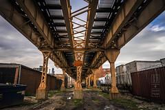 """L"" For Elevated Transit (shapeshift) Tags: d700 chicago davidpham davidphamsf documentary engineering f14 illinois industrial nikon overhead shapeshift structure train transport transportation travel usa traintracks"