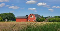 Windowed barn (Larry the Biker) Tags: barn redbarn ag agriculture country rural farm farming raytownship michigan