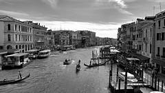Grand (nige cox) Tags: italy venice rialto bridge canal grandcanal