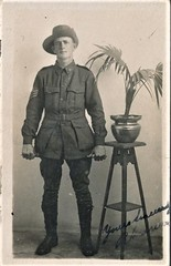 Australian soldier with a signature - R. Andrews? (Aussie~mobs) Tags: portrait australian soldier uniform sergeant vintage ww1 andrews mounted randrews richardandrews 14thbattalion aif army military