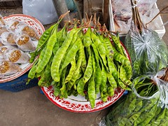 Parkia speciosa Hassk. Fabaceae Mimosoideae-stink bean, สะตอ (SierraSunrise) Tags: plants fruit pods market edible fabaceae mimosoideae thailand phonphisai nongkhai isaan esarn