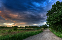 Dirt road under the evening sky (tom.sk) Tags: landscape road rural sky dirt evening field path country sunset way nature green farm cloud sunlight horizon poland agriculture blue clouds outdoor farmland scenery meadow countryside grass sunrise beautiful polish yellow view land cloudscape colorful farming summer dusk plant fields travel beauty idyllic scene color dirtroad