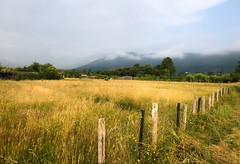 Las nieblas se deslizan por la ladera de Jaizkibel (eitb.eus) Tags: eitbcom 16599 g1 tiemponaturaleza tiempon2019 monte gipuzkoa hondarribia josemariavega