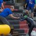 Mann des Ironman-Teams hilft einer Schwimmerin nach der ersten Triathlonetappe aus dem Wasser