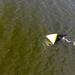 Luftbild zeigt einen Ironman-Triathlet beim Schwimmen um eine Boje im Vesijärvi-See bei Lahti, Finnland