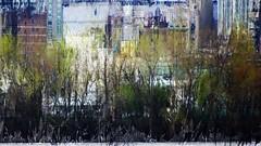 mani-1659 (Pierre-Plante) Tags: art digital abstract manipulation