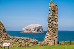 Bass Rock from the ruins of Tantallon Castle (Bev & Paul Mynott) Tags: tantalloncastle northberwick eastlothian castles bass rock firthofforth scotland