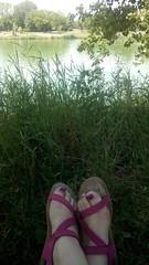 my summer in pink - swimming again (rotkraut.c.r) Tags: pink rosa feet füse sandals sandalen green grün reed schilf seeschlacht langenzersdorf loweraustria niederösterreich