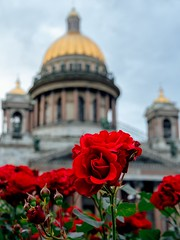 Roses on fon of St.Isaac Cathedral (Alexx053) Tags: microfourthirdsgallery roses flower
