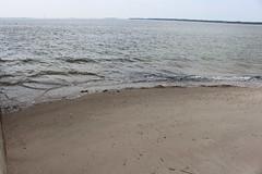 Sand along Ashley River (MJRGoblin) Tags: charleston southcarolina 2019 ashleyriver charlestoncounty