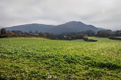 En el lado opuesto (SantiMB.Photos) Tags: winter field rural girona campo invierno garrotxa santjoanlesfonts 2blog 2ig 2tumblr geo:lat=4221332389 españa geotagged cataluna geo:lon=249465472
