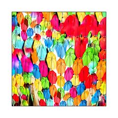 Umbrellas (Jean-Louis DUMAS) Tags: art abstract artistic abstraction artiste abstrait artistique artist red rouge carré square umbrella parapluie colors multicouleurs
