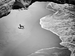 ¿Dónde estará mi amo? (jantoniojess) Tags: portugal algarve playa praia beach mar sea olas perro dog monocromático monochrome blancoynegro blackandwhite panasoniclumixtz90 alone solitario perdido praiadocarvalho