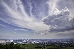 20190620_0838 (123_456) Tags: oostenrijk austria österreich viena wenen wien kahlenberg