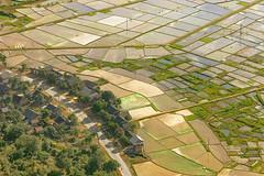 _MG_4890.0212.Mai Châu.Hoà Bình. (hoanglongphoto) Tags: asia asian vietnam northvietnam northernvietnam northwestvietnam landscape scenery vietnamlandscape vietnamscenery maichaulandscape village town maichautown house manyhouses road ricefields transplantingseason sowingseeds walley maichauwalley canon canoneos5dmarkii canonef70200mmf28lisiiusm tâybắc hoàbình maichâu thịtrấnmaichâu thunglũngmaichâu phongcảnh phongcảnhmaichâu mùacấy maichâumùacấy cánhđồng nhữngngôinhà conđường