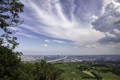 20190620_0817 (123_456) Tags: oostenrijk austria österreich viena wenen wien kahlenberg