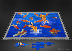 Play time (_Ann m_) Tags: goldfish fish jigsaw manipulation mmm mmmchallenge photoshop photomanipulation photoart