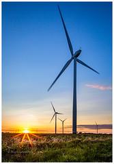Wind and Solar (Mark Lindstrom) Tags: sunset green ecology landscape solar energy wind environment turbine windfarm tiltshift northlincolnshire flixborough canon5dmk3 sunstar