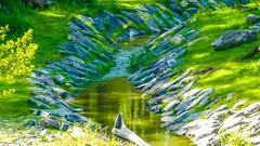 Green - 7024 (✵ΨᗩSᗰIᘉᗴ HᗴᘉS✵66 000 000 THXS) Tags: green river water pairidaiza sony sonydscrx10m4 belgium europa aaa namuroise look photo friends be yasminehens interest eu fr party greatphotographers lanamuroise flickering